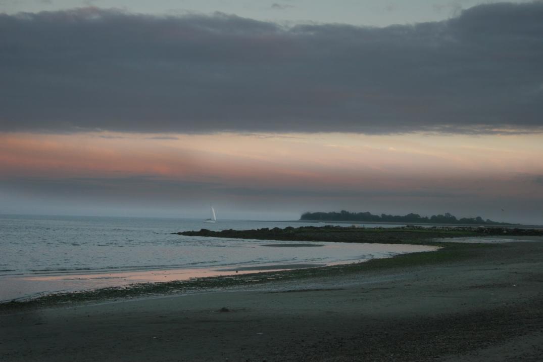 Compo Beach_1628